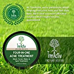 TreeActiv Four-in-One Acne Treatment | Wash, Scrub, Mask, and Spot Treatment | Heals Rosacea | Exfoliating Sugar | Face or Body | Natural Sulfur Clear Skin Cleanser | Bentonite (4 Oz)