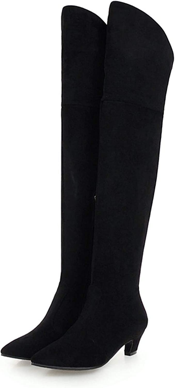 Women/'s Knee High Boots Pointy Toe Kitten Heels Leather Side Zip Shoes Comfort