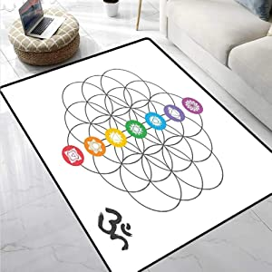 Sacred Geometry Soft Comfy Area Rugs Chakra Points in Vintage Concentric Rings of Partial Circle Zen Theme Image Anti-Static, Water-Repellent Rugs Multicolor 47 x 59 Inch
