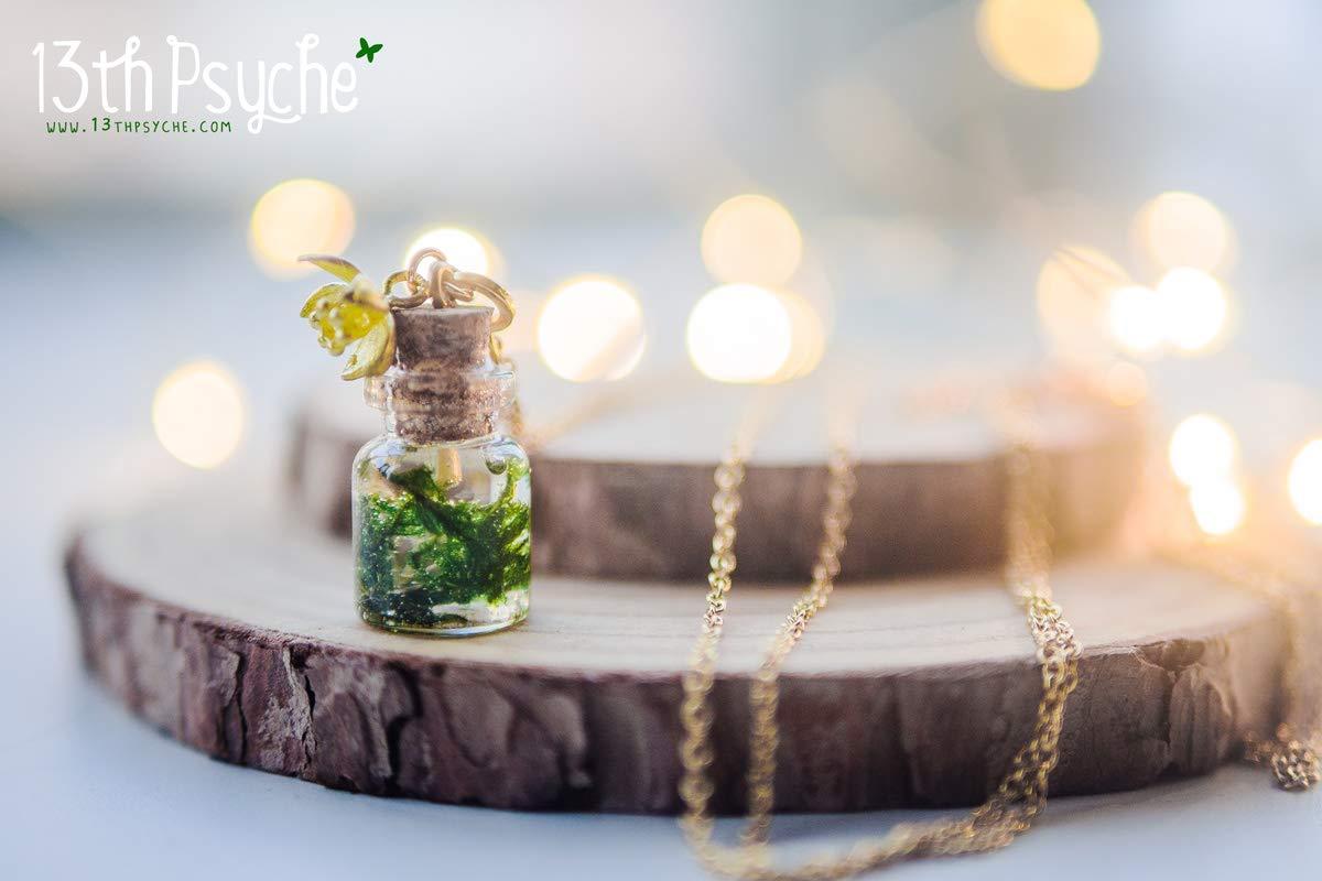 Collar de musgo natural, collar de botella con musgo, botella de vidrio, terrario en miniatura, collar delicado, joyería botánica, collar de botella de ...