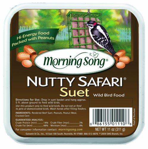 Morning Song 11358 Nutty Safari Suet Wild Bird Food, (Safari Food)