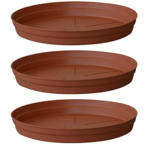 Amazon Com Almi Carmel Plastic Plant Saucer Drip Tray 12 Inch 3
