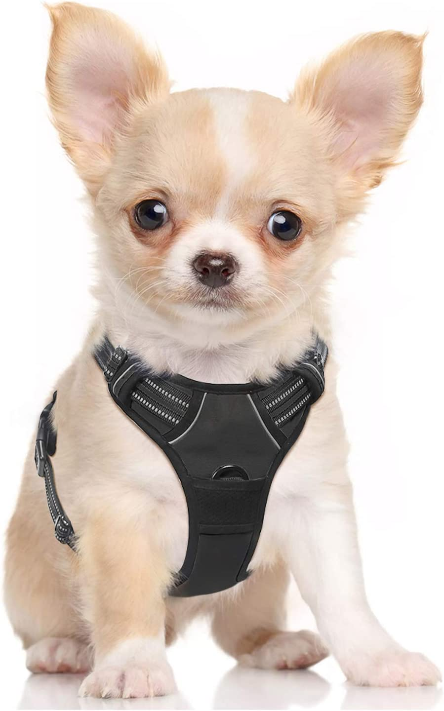 Top 10 Dog Harnesses | 2020 Updated Review 7