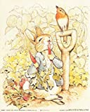 The Tale of Peter Rabbit Beatrix Potter the Original and Authorized Edition Wall Decor Art Print Poster (16x20)