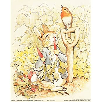 Amazon.com: The Tale of Peter Rabbit Beatrix Potter the Original and ...