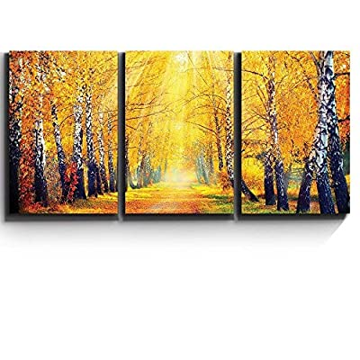 Quality Artwork, Elegant Picture, Print Contemporary Art Wall Decor Sunny Autumn Day Trees line a Path Artwork Wood Stretcher Bars x3 Panels