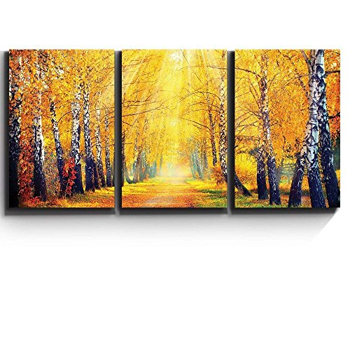 3 Piece Canvas Print - Contemporary Art, Modern Wall Decor - Sunny Autumn day trees line a path - Giclee Artwork - Gallery Wrapped Wood Stretcher Bars - Ready to Hang- Wall26 - 24