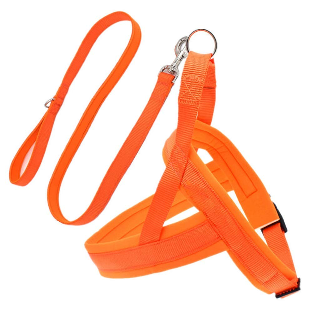 orange XSLZRZBH Pet Supplies Chest Strap with Small and Medium Dogs Dog Dog Leash, Dog Leash, Pet Dog Chain, Rope Length  120cm (color   Purple, Size   L)