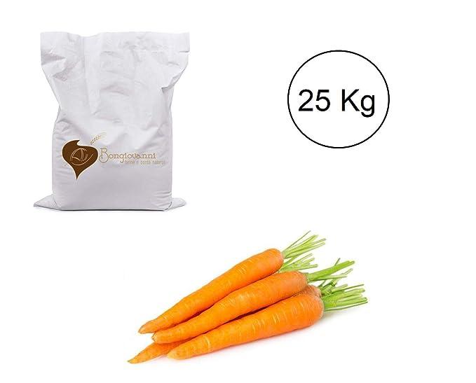 Zanahoria deshidratada polvo 25 kg BIO