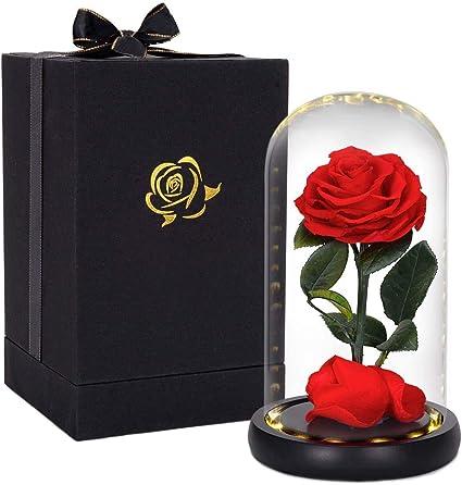 Hela Flores Preservadas Hechas A Mano Rosa Eterna Con Luces Led Y Caja De Regalo 20cm La Bella Y La Bestia Rosa Amazon Es Hogar