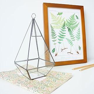 Desconocido Terrario De Cristal De Hadas Invernadero En Miniatura Jardín 12cm - En Forma De Diamante Genérico