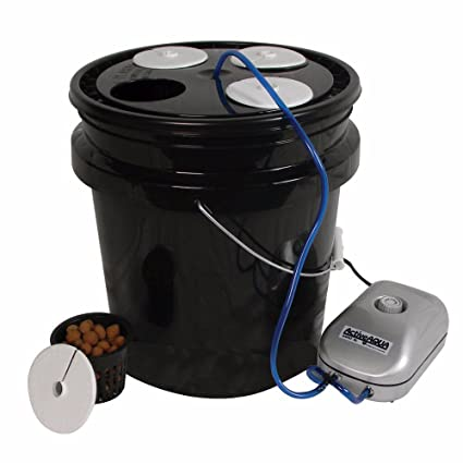 Amazon.com: htgsupply 5-Gallon Bubble Boy 4 Banger Deep ...
