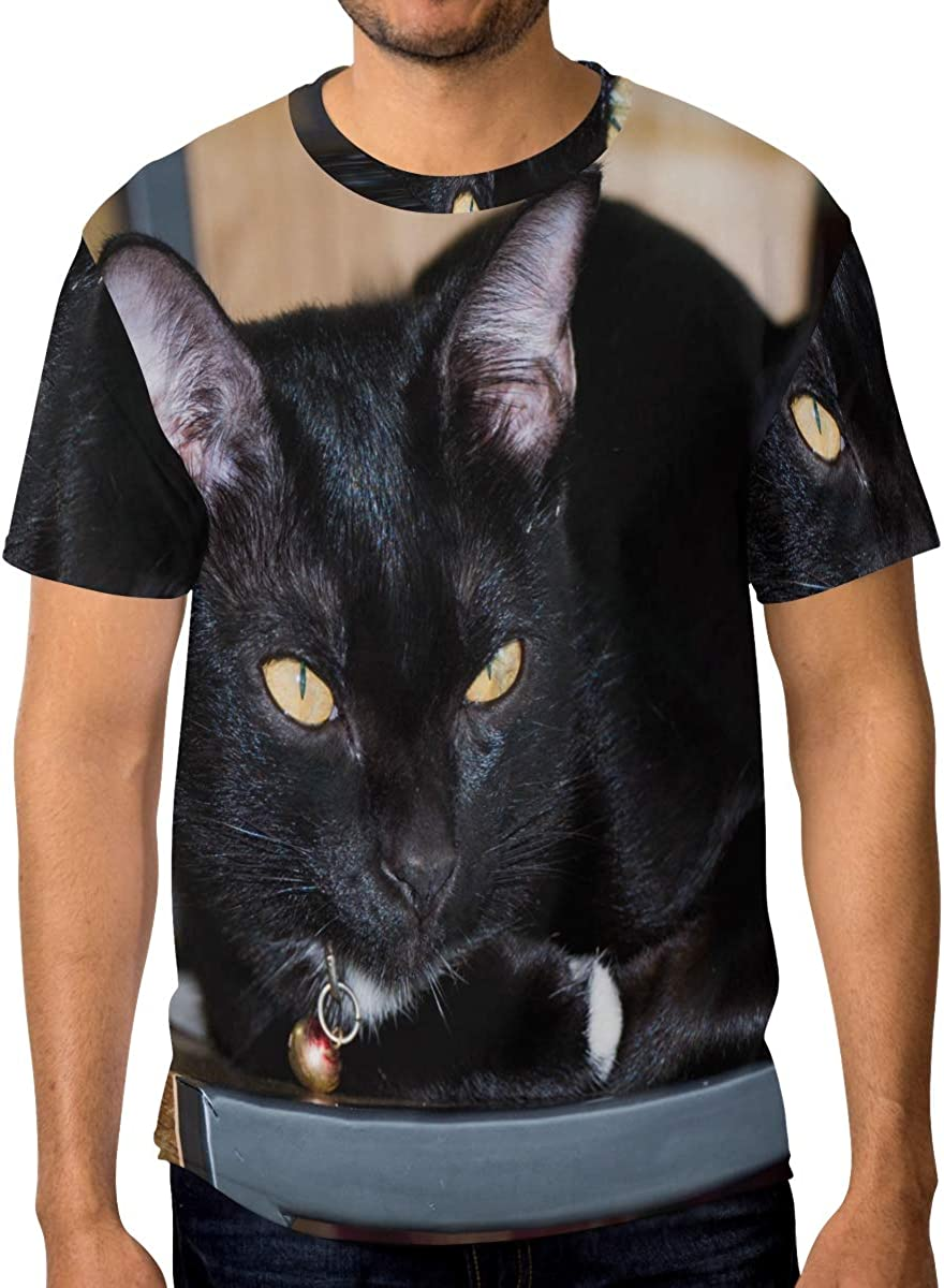 DERTYV T Shirts for Men,Soft and Breathable Tees,Round Neck T Shirts Mens Short Sleeve