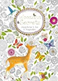 Woodland Secrets (Colouring Book): Adventures in Ink and Imagination (Colouring Books)