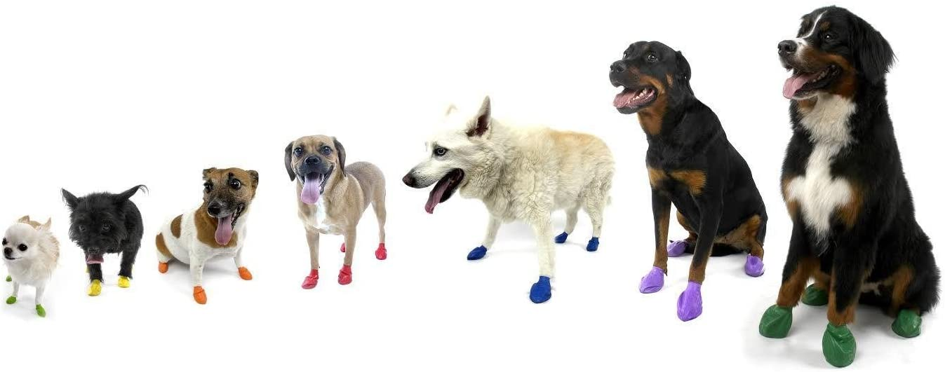 Tiny Pawz Natural Rubber Dog Boots