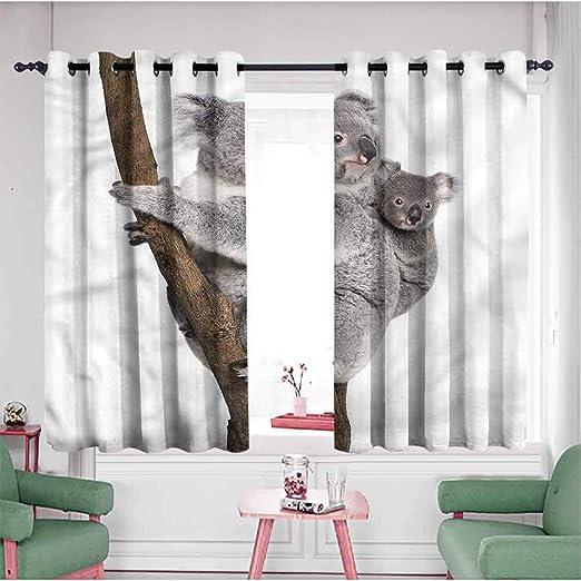 Jktown Koala - Cortinas para Puerta corredera, diseño de Oso ...