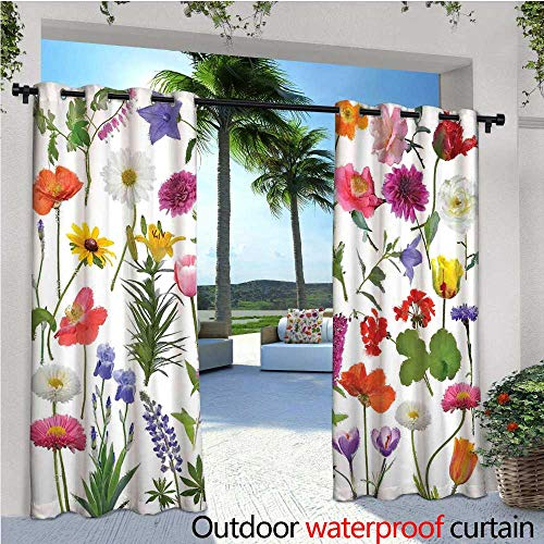 Type Blush Rose (cobeDecor Flower Indoor/Outdoor Single Panel Print Window Curtain Types of Flowers Vivid Colored Roses Tulips Daisies Hydrangeas Lilacs Artwork Print Silver Grommet Top Drape W84 x L84 Multicolor)