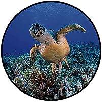 Printing Round Rug,Turtle,Cheloniidae in Deep Blue Ocean Aquatic Endangered Wildlife Nature Photo Mat Non-Slip Soft Entrance Mat Door Floor Rug Area Rug For Chair Living Room,Violet Blue Light Brown