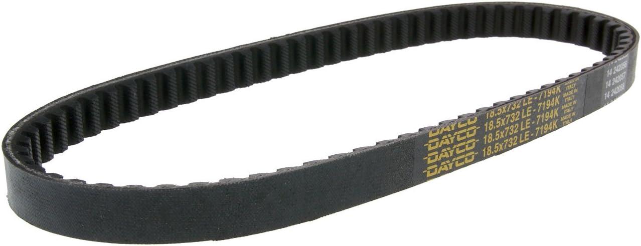 Keilriemen Typ 732mm f/ür Vespa ET2 00 ZAPC381