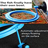 FLOURITHING 2 Pcs Fish Feeding Ring, Fish Safe