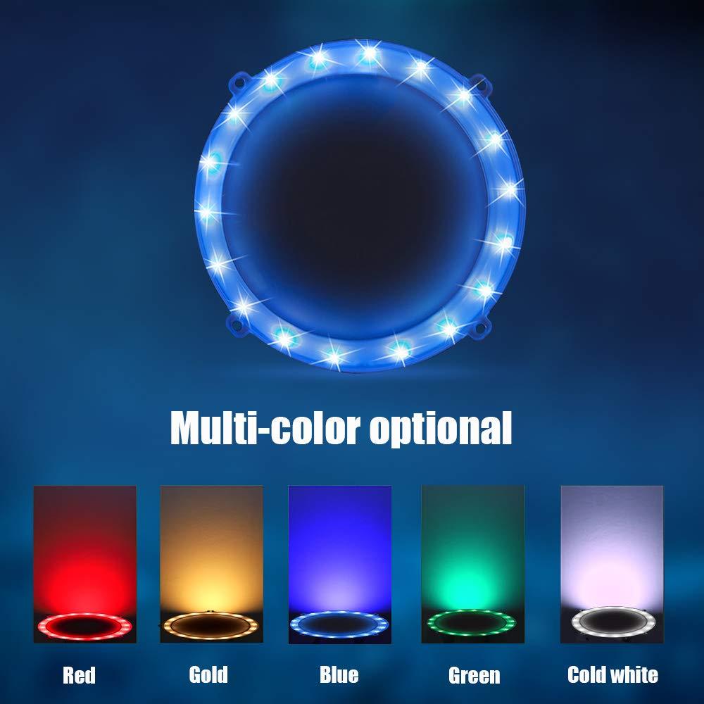 Blinngo Cornhole LED Board Lights, LED Cornhole Lights Meet Regulation Cornhole Boards(4 feet x 2 feet), Waterproof Cornhole LED Lights (Two Set)-Blue by Blinngo