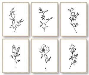 Botanical Plant Wall Art Prints, Minimalist Wall Art, Black and White Wall Art, Plant Wall Decor, Bathroom Wall Decor, Kitchen Wall Decor (Set of 6, 8X10in, Unframed)