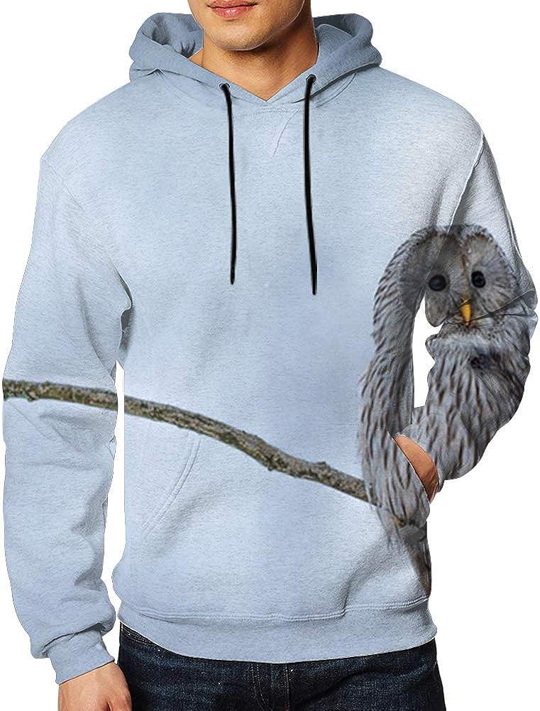 Bold Jungle Print Silhouette Paradise Florida 3D Print Hoodie Long Sleeve Pullover Sweatshirts for Men