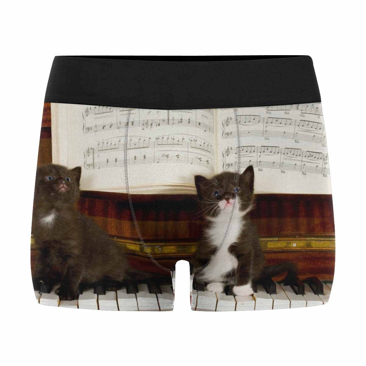 XS-3XL INTERESTPRINT Custom Mens All-Over Print Boxer Briefs Small Kittens Sit on Keys of The Piano