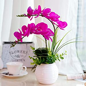 YILIYAJIA Artificial Orchid Bonsai with Ceramics Vase, Fake PU Real Touch Flowers Phalaenopsis Bonsai for Table Office Home Party Decoration(Style 2, White Vase)