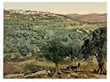 Historic Photos General view, Samaria, Holy Land, (i.e, Sabastiyah, Israel)