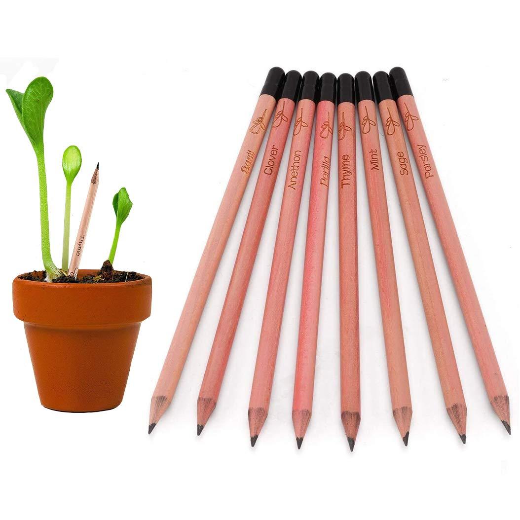 Sprossenstift Bleistift Pflanze Samen Bleistift mit Krä utersamen Naturholz Fü r Kinder Geschenk (5 Packungs) YIHAO