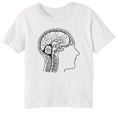 Erido Gehirn Anatomie Kinder Unisex Jungen Mädchen T-Shirt Rundhals ...