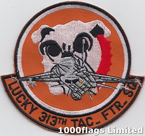 Us Air Force Squadron Patches - 313th Tactical Fighter Squadron US Air Force Embroidered Patch