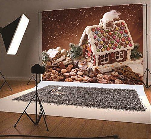 Amazon.com: Telón de fondo navideño.: Camera & Photo