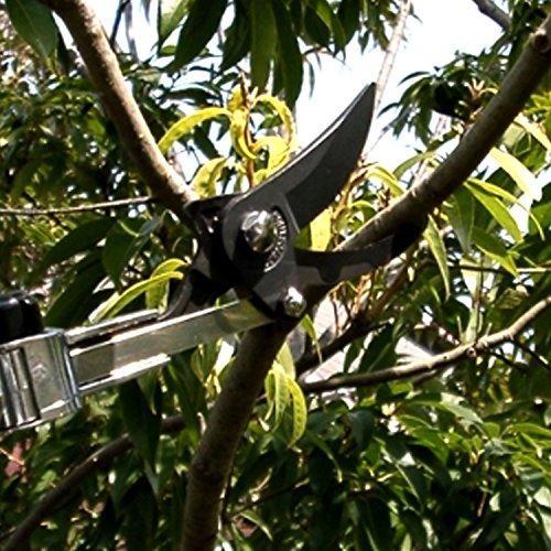 ARS LA-180ZR203 4-to-7-Feet Long Reach Pruner