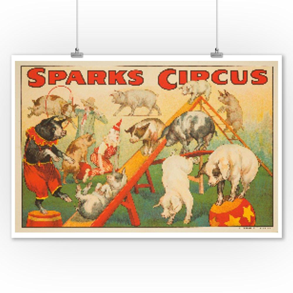 Amazon.com: Sparks Circus - Pigs Vintage Poster USA c. 1925 (9x12 ...