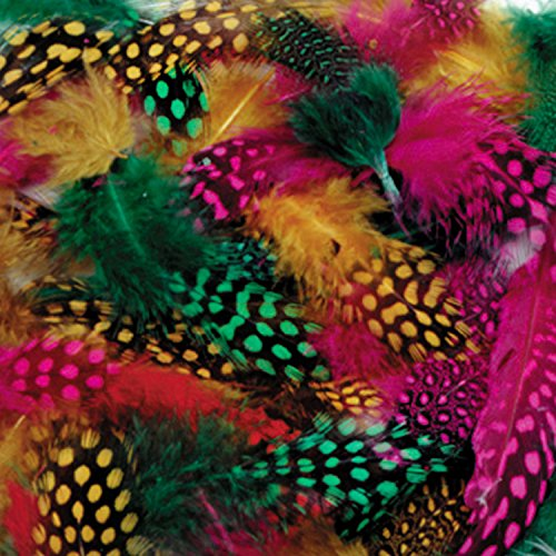 spotted-feathers