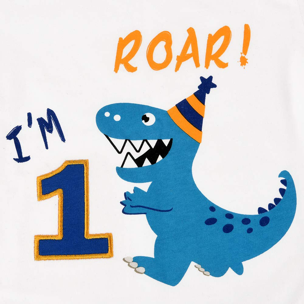 Roar 1st Birthday Party Supplies Baby Boys Gift Short Sleeve White T-Shirt 100/% Cotton Crew Neck T-Rex Printed Embroidery Graphic Top Tee AMZTM Dinosaur Birthday T Shirt
