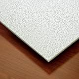 Genesis - Stucco Pro Ceiling Tile - Drop / Grid Ceiling - Fast and Easy Installation (2' x 4' Tile, White)