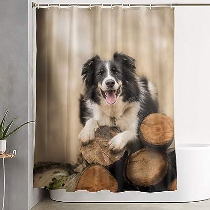 """auf Maß Foto-Vorhang Fotogardine /""""Collie/"""" Vorhang Fotodruck"""