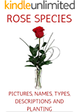 ROSE SPECIES: PICTURES, NAMES, TYPES, DESCRIPTIONS AND PLANTING