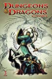 img - for Dungeons & Dragons Classics Volume 3 book / textbook / text book