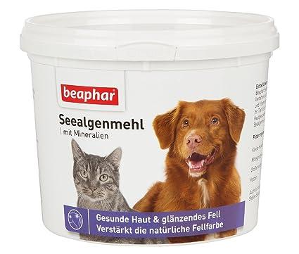 Beaphar Mar algas Harina I vitaminas y Nutrientes para Sano & brillante I de pelo para