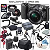 Sony A5100 Mirrorless Digital Camera Bundle with 16-50mm (Black) & eDigitalUSA Professional Kit