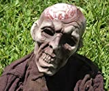 Zombie Brain Groundbreaker Prop Halloween NEW Haunted House Decor