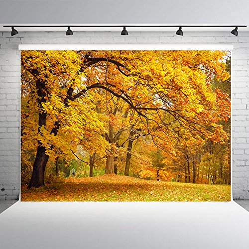 7x5ft Yellow Leaves Fall Backdrop for Photographers Vinyl Autumn Photo Background Studio Props Photography - Photo Fall Leaves
