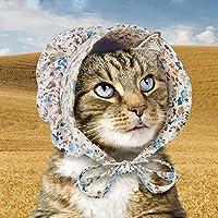 Accoutrements Cat Bonnet