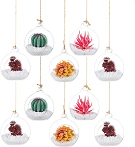Hanging Tealight Candle Holder Glass Globes Terrarium Orbs 10 Pcs Planter Air Fern Plants Vase Hanger 3.14 Inches for Home Party Wedding Garden DIY Design