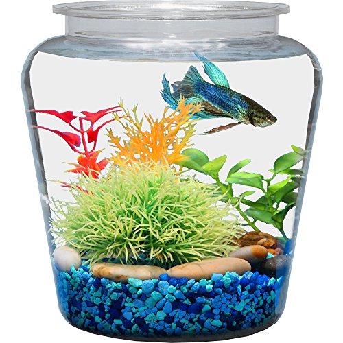 fish shaped fish bowl - 4