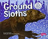 ice age mammals - Ground Sloths (Ice Age Animals)